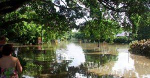 Flood Resilient Program